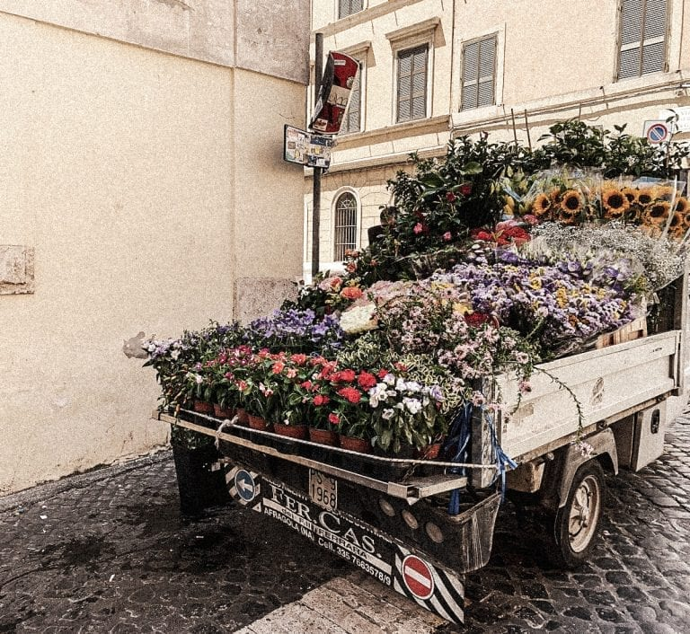 fresh flower seller shows up with mini van in spring and summer in cavour oftenly