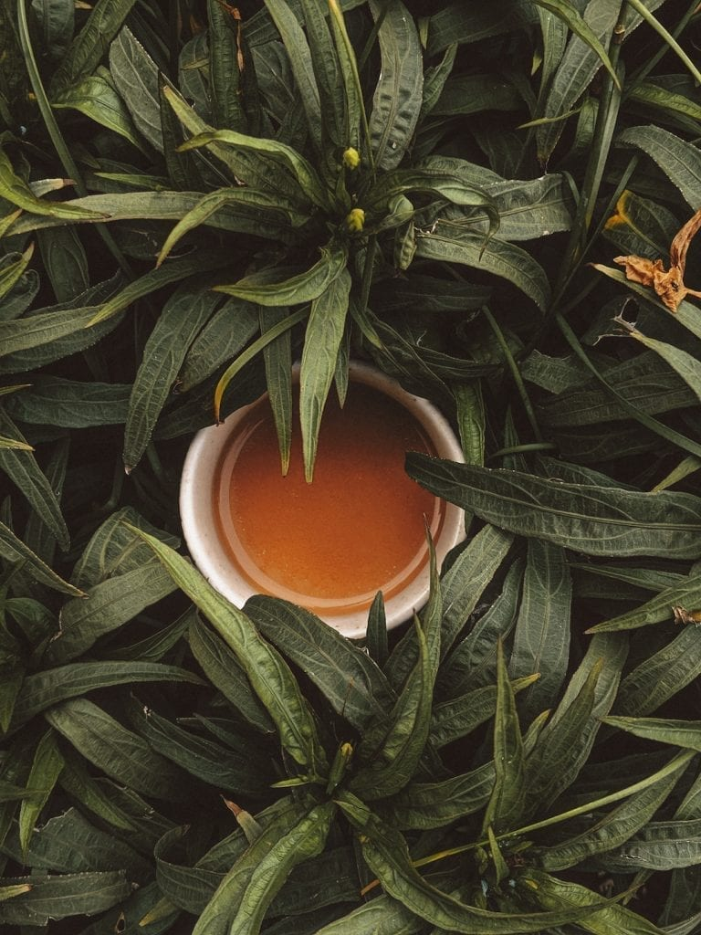 talking about the culture shock of drinking tea in china and in italy