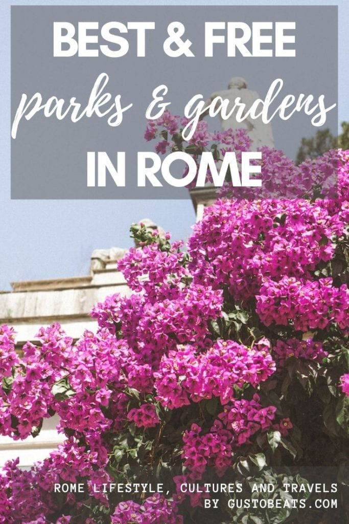 the pink bloom in villa borghese