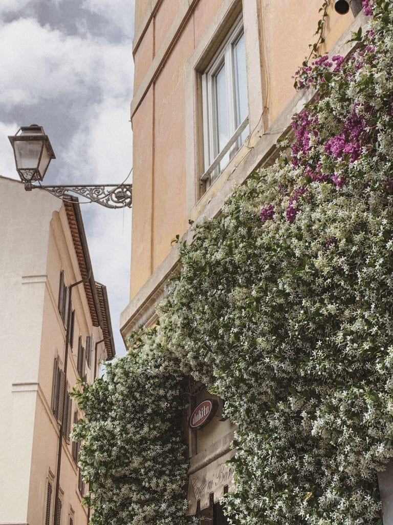 gustobeats how rome and italy feel from my visual diary june 2020 with the flowers in Rome city center
